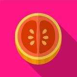 Illustratie van het grapefruit de vlakke pictogram royalty-vrije illustratie