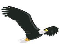 Illustratie van het majestueuze volwassen kale adelaar vliegen Stock Afbeeldingen