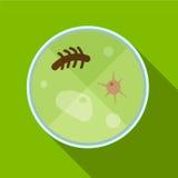 Illustratie van het micro-organisme de vlakke pictogram vector illustratie