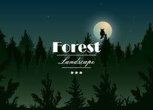 Illustratie van het nacht de boslandschap Royalty-vrije Stock Foto