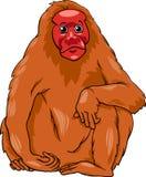 Illustratie van het Uakari de dierlijke beeldverhaal Stock Foto