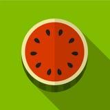 Illustratie van het watermeloen de vlakke pictogram royalty-vrije illustratie