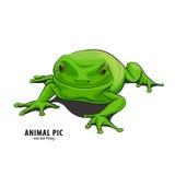 Illustratie van kikker Royalty-vrije Stock Afbeelding