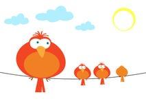 Illustratie van kleurrijke vogels Royalty-vrije Stock Foto