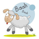 Illustratie van leuke gekke schapen Royalty-vrije Stock Afbeeldingen