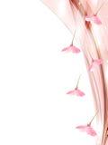 Illustratie van mooie kersenachtergrond Stock Afbeelding