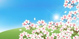 Illustratie van mooie kersenachtergrond Stock Foto's