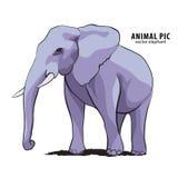 Illustratie van olifant Royalty-vrije Stock Foto's