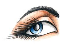 Illustratie van oog Stock Afbeelding