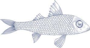 Illustratie van overzeese vissenverticale raamstijl Stock Foto's