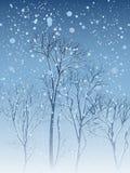 Illustratie van sneeuwval in park. Stock Foto