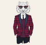 Illustratie van tijger hipster omhoog gekleed in jasje, broek en sweater Vector illustratie Stock Afbeeldingen
