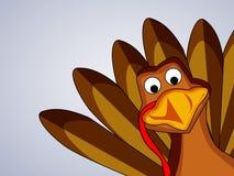 Illustratie van Turkije voor Dankzegging Stock Afbeelding