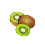 illustratie van vers kiwifruit Stock Foto's