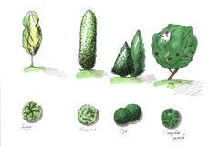 Illustratie van vier bomen met verschillende kleuren op een witte achtergrond stock illustratie