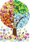 Illustratie van vier seizoenenboom Stock Fotografie
