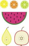 Illustratie van vruchten vector illustratie