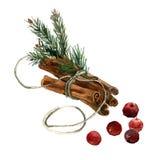Illustratie van waterverf de hand geschilderde Kerstmis met kaneel Stock Foto's
