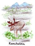 Illustratieoriëntatiepunt die wild rendier in Kamchatka schetsen vector illustratie