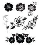 Illustraties van bloemen stock illustratie