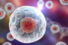 Illustratiion de células humanas libre illustration