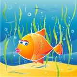 illustratio ψαριών λίγο διάνυσμα Στοκ Φωτογραφίες