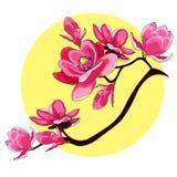 Illustratio decorativo di vettore del giardino rosso del fiore della magnolia del ramo illustrazione di stock