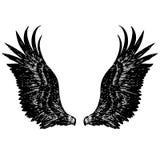 Illustration à main levée de croquis des ailes d'ange Photo libre de droits