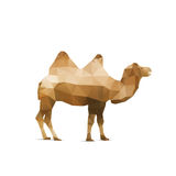 Illustration of abstract origami camel isolated on white backgro Stock Images