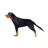 Illustration of abstract origami rotteweiler dog Stock Photo