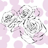 Illustration of abstract roses on a white background. Graphic line Illustration of abstract roses on a white background Royalty Free Stock Photo