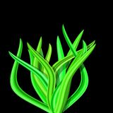 Illustration of abstract tussock Royalty Free Stock Images
