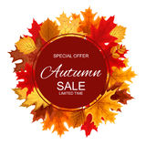 Illustration abstraite Autumn Sale Background de vecteur avec la chute Photos stock