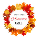 Illustration abstraite Autumn Sale Background de vecteur avec la chute Photo libre de droits