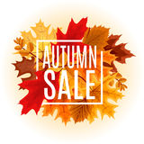 Illustration abstraite Autumn Sale Background de vecteur avec la chute Photos libres de droits