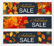 Illustration abstraite Autumn Sale Banner Background de vecteur avec Photos stock