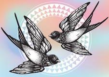 Illustration admirablement détaillée de cru avec des oiseaux d'hirondelle de vol au-dessus de modèle géométrique tribal Illustrat illustration stock