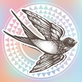 Illustration admirablement détaillée de cru avec l'oiseau d'hirondelle de vol au-dessus du modèle géométrique tribal Illustration illustration de vecteur