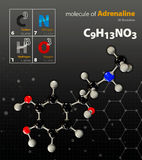 Illustration of Adrenaline Molecule  black background Stock Image