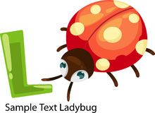 Illustration alphabet letter l-ladybug Stock Photos