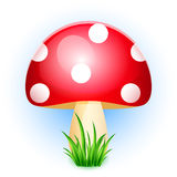 Illustration of amanita in grass Royalty Free Stock Photography
