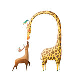 Illustration: The Amazing Deer and The Giraffe isolated on White Background. Stock Photo