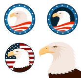 Illustration of american bald eagle Royalty Free Stock Image