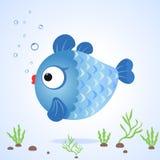 Fish. Illustration amusing character circular blue fish Stock Photography