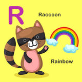Illustration  Animal Alphabet Letter R-Rainbow,Raccoon. Vector Royalty Free Stock Image