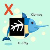 Illustration  Animal Alphabet Letter X-X-ray,Xiphias Stock Image