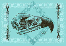 illustration  animal skull Royalty Free Stock Photo