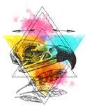 illustration  animal skull Stock Photo