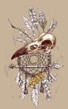 illustration  animal skull Stock Photography