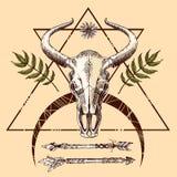 Illustration animal skull Royalty Free Stock Photo